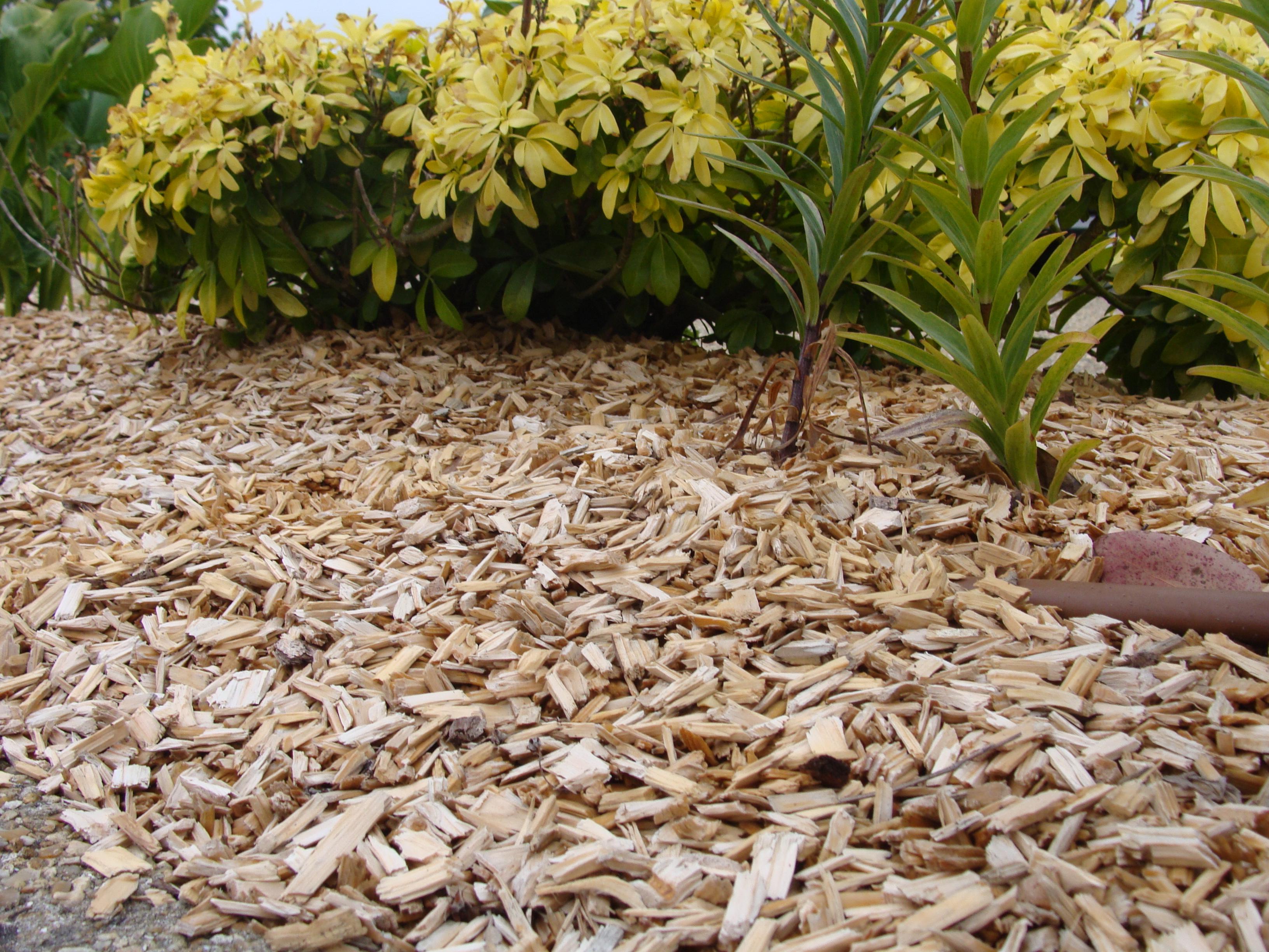Paillage longue duree - Copeaux de bois jardin ...